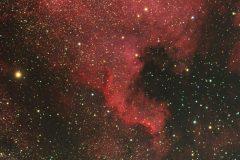 Nordamerikanebel NGC7000 im Sternbild Schwan (Foto: Kamila Cymorek)
