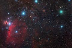 Komet C/2020 M3 ATLAS nahe Pferdekopfnebel im Sternbild Orion (Foto: Norbert Mrozek)