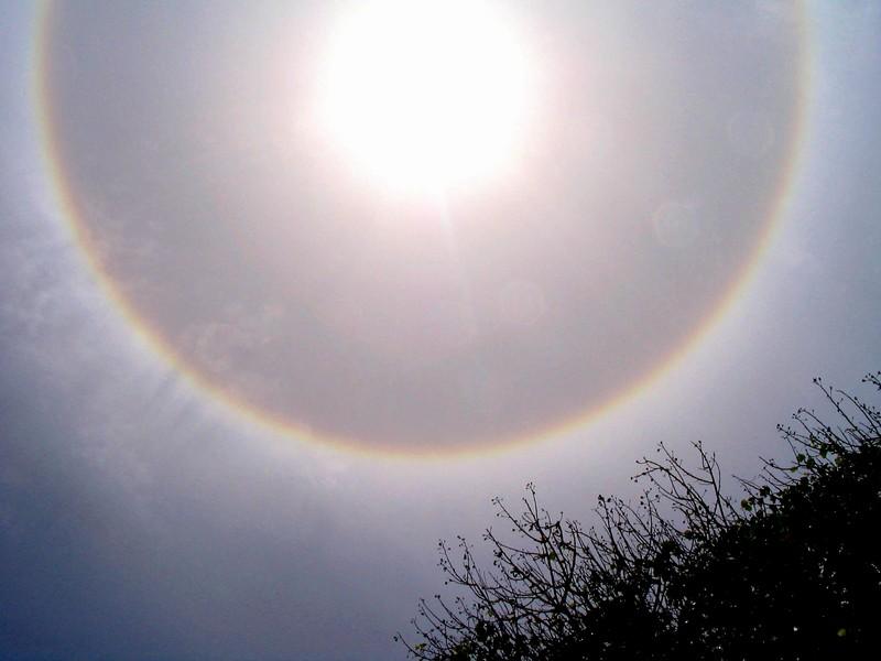 Halo um die Sonne, aufgenommen auf den Seychellen (Foto: B. R., Sternwarte Hagen)